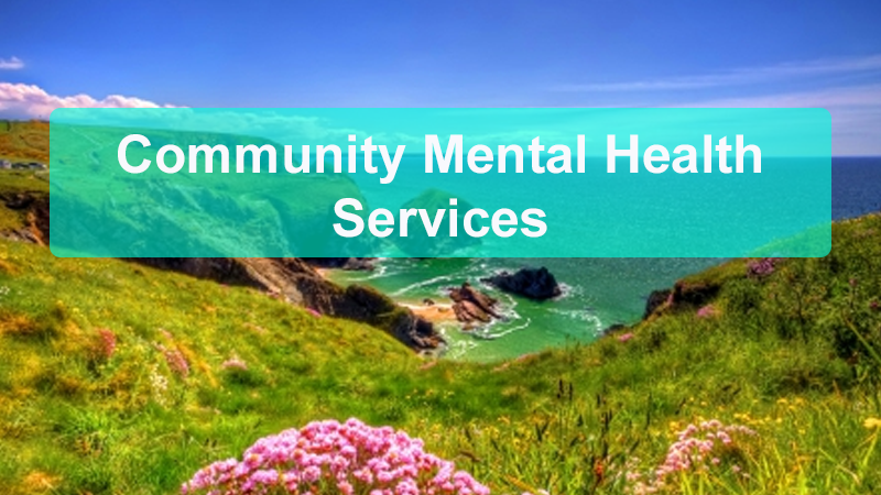 Community Mental Health Services Header