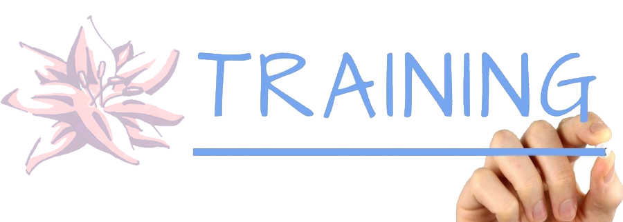Epilepsy Training Header